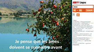 Бесплатное онлайн-приложение ABBYY Lingvo для Windows 8