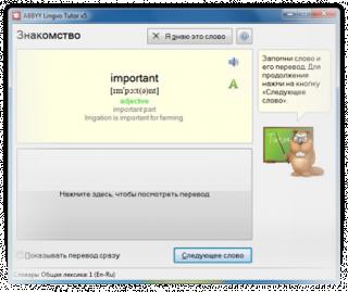 Специальная Яндекс-версия ABBYY Lingvo х5