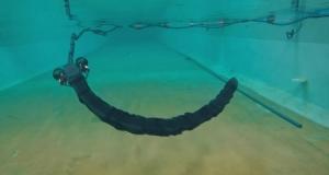 Норвезькі вчені винайшли робозмію Eelume для перевірки та ремонту підводних конструкцій