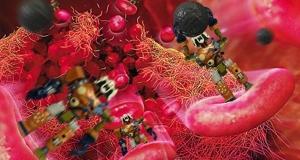 В хирургии начнут использовать микроботов для локального уничтожения раковых клеток