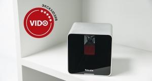 Обзор гаджета Petcube camera: котокубик