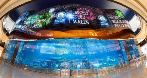 LG встановила наймасштабнішу в світі OLED-стіну в Dubai Mall в Дубаї