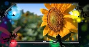 IGZO 4K LED - ультратонкий дисплей от Sharp