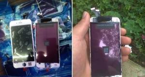 iPhone 6 - редкое зрелище 5,5 дюймовой модели - изображений составных частей, в том числе и батарея 2915 мАч