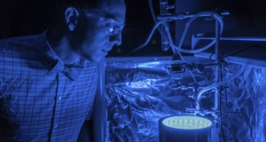 Вчені винайшли штучний фотосинтез, який врятує планету від парникових газів