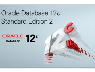 Oracle выпустил Oracle Database 12.1.0.2 Standard Edition (SE2)