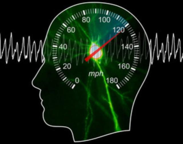 Ученые обнаружили, что наш мозг имеет собственный спидометр
