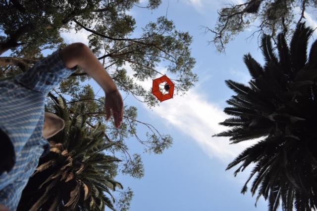 «Парашут» Birdie для GoPro дозволяє робити фотографії в повітрі
