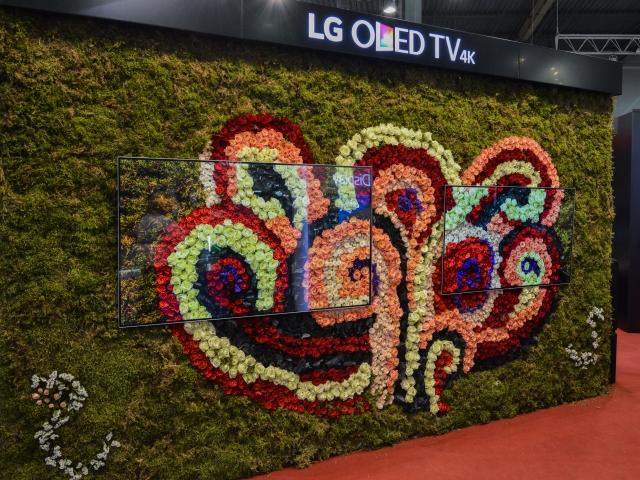 Інноваційний та квітучий стенд LG на виставці CEE 2017