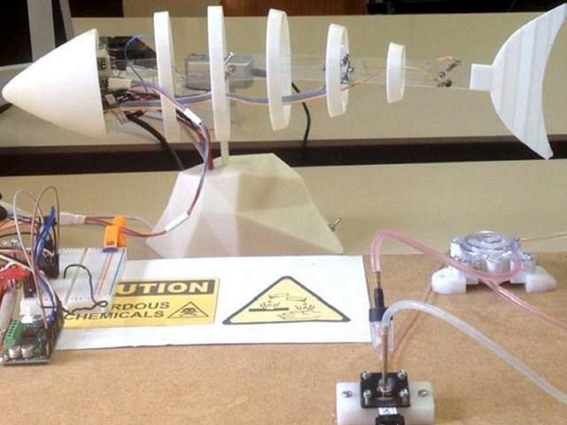 Риба-робот визначає якість води