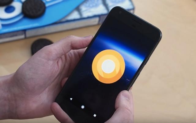 Смартфони Pixel отримають оновлення до Android O на початку серпня