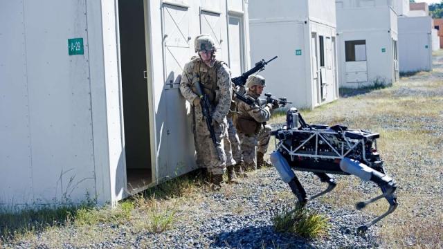 Морская пехота США тестирует боевых собак-роботов