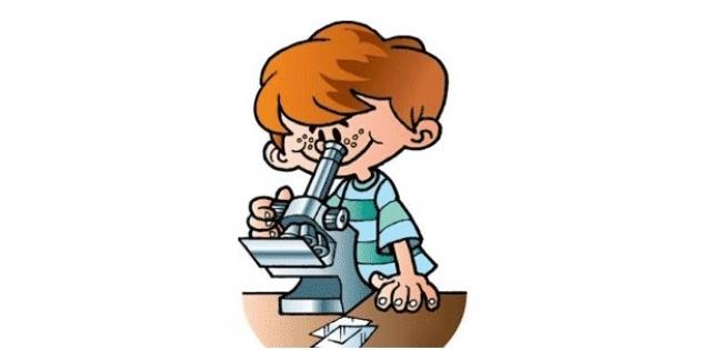 В помощь юным биологам и не только