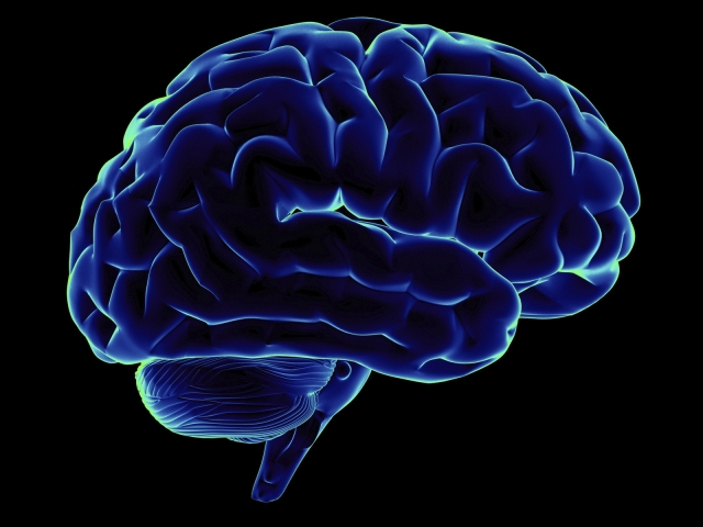 Изображение мозга, формирующего новую идею