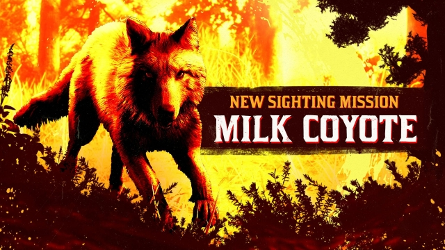 Нова Sighting Mission: Legendary Milk Coyote був помічений в околицях Blackwater