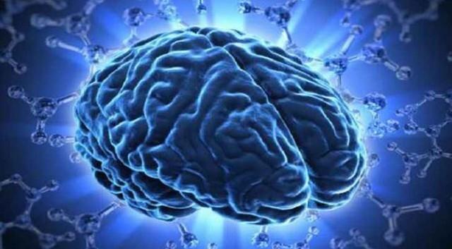 Оптическое волокно может привести к созданию искусственного интеллекта