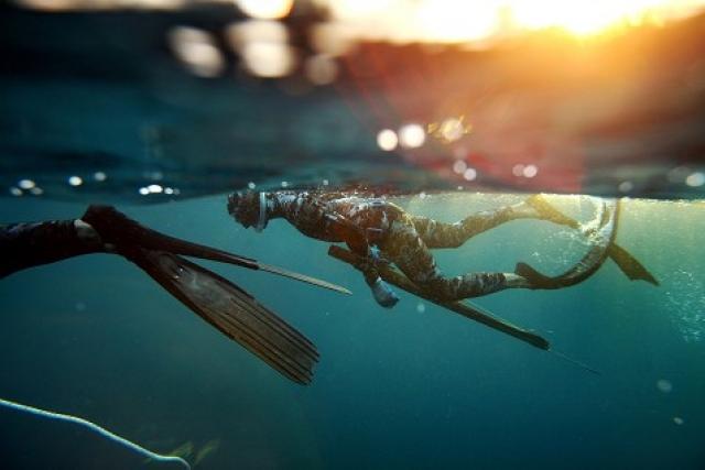 Подводная охота! Часть первая