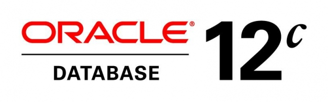 Опции Oracle Database 12c
