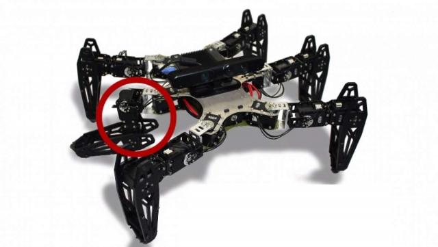 Робот учится ходить на поврежденных ногах