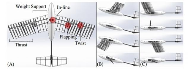 Новые крылья и реактивные двигатели для плавающих и летающих роботов